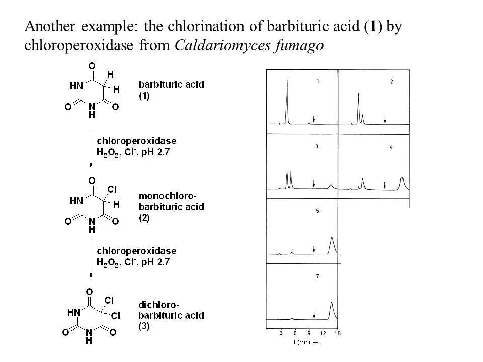 Another example: the chlorination of barbituric acid (1) by chloroperoxidase from Caldariomyces fumago