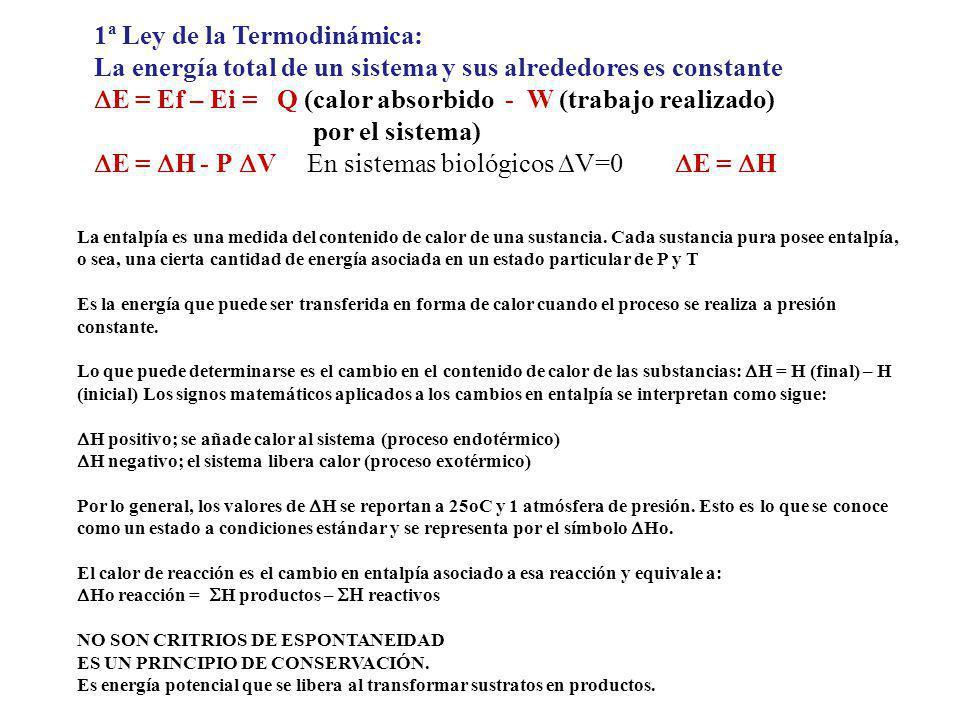 1ª Ley de la Termodinámica: