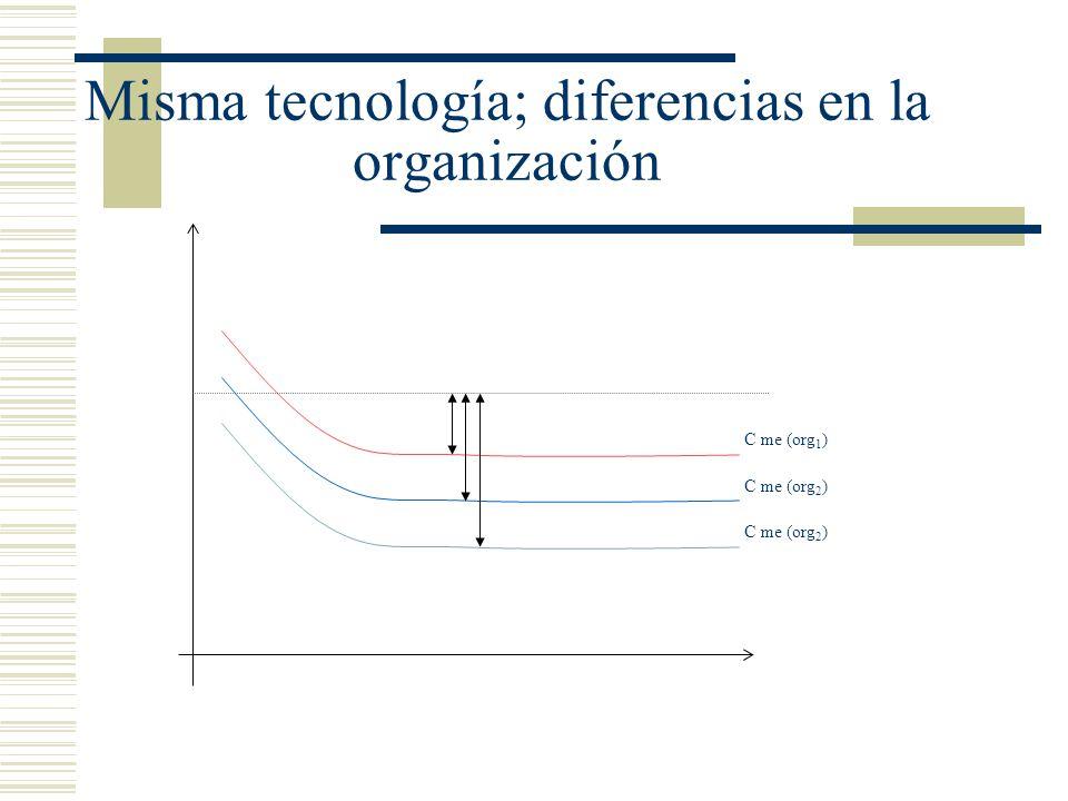 Misma tecnología; diferencias en la organización