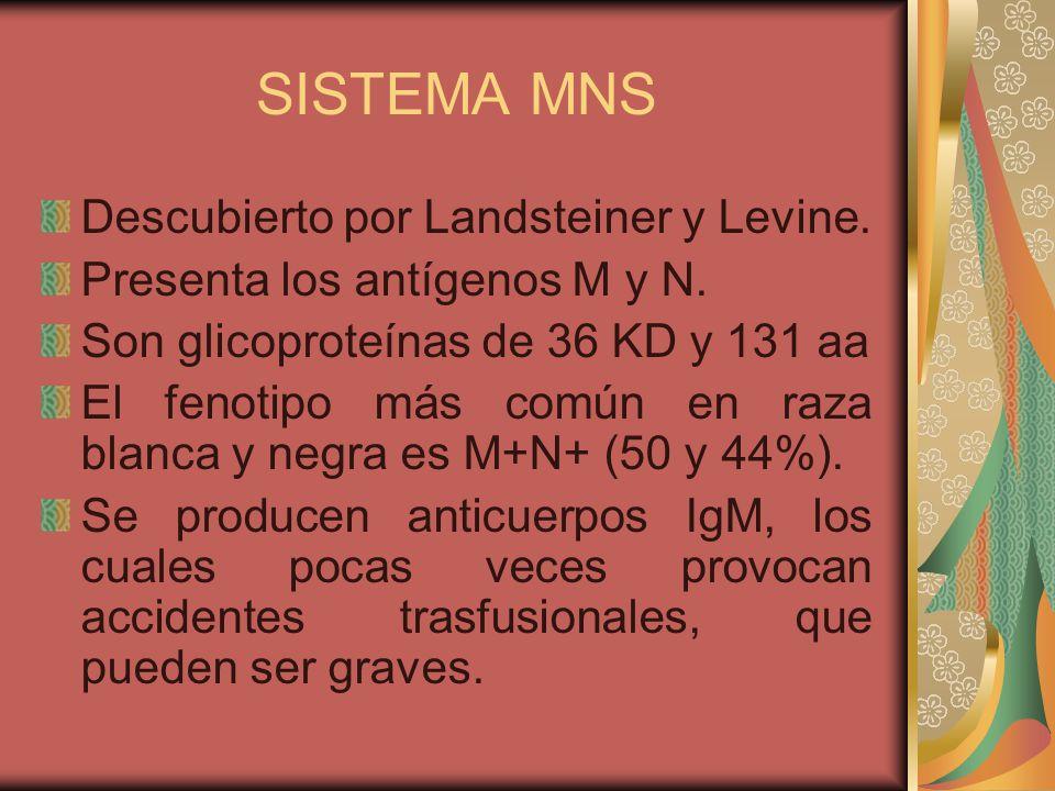 SISTEMA MNS Descubierto por Landsteiner y Levine.