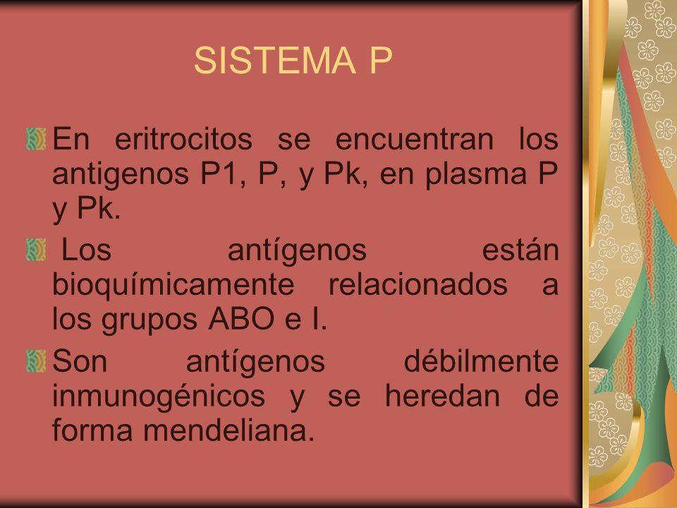 SISTEMA P En eritrocitos se encuentran los antigenos P1, P, y Pk, en plasma P y Pk.
