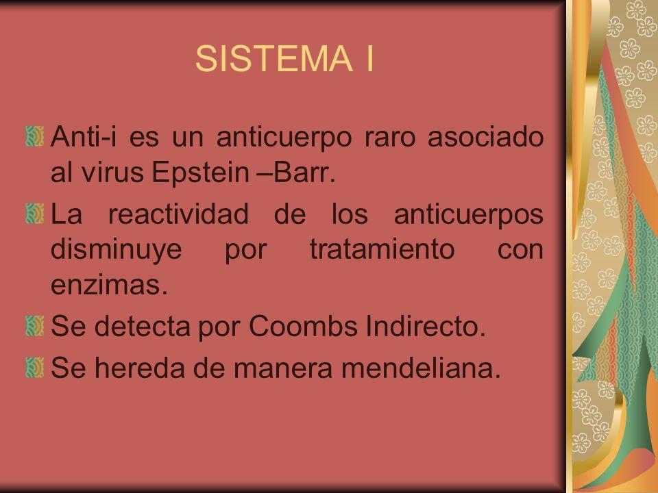 SISTEMA I Anti-i es un anticuerpo raro asociado al virus Epstein –Barr. La reactividad de los anticuerpos disminuye por tratamiento con enzimas.