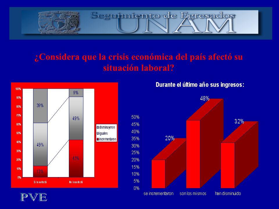 ¿Considera que la crisis económica del país afectó su situación laboral