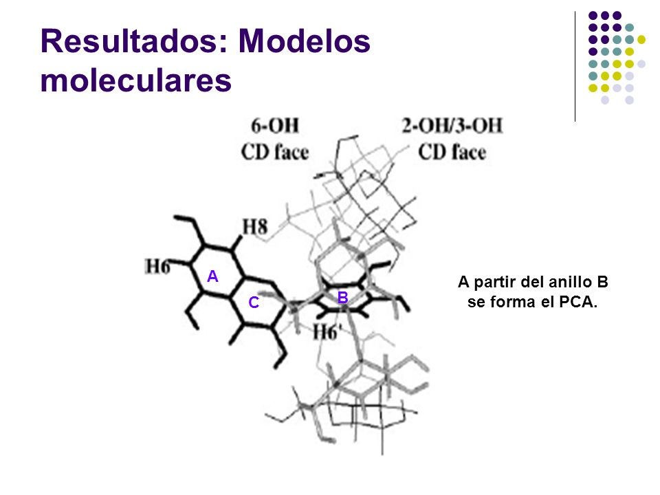 Resultados: Modelos moleculares
