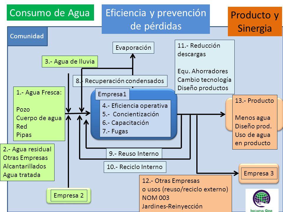 Eficiencia y prevención