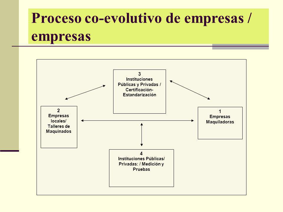 Proceso co-evolutivo de empresas / empresas