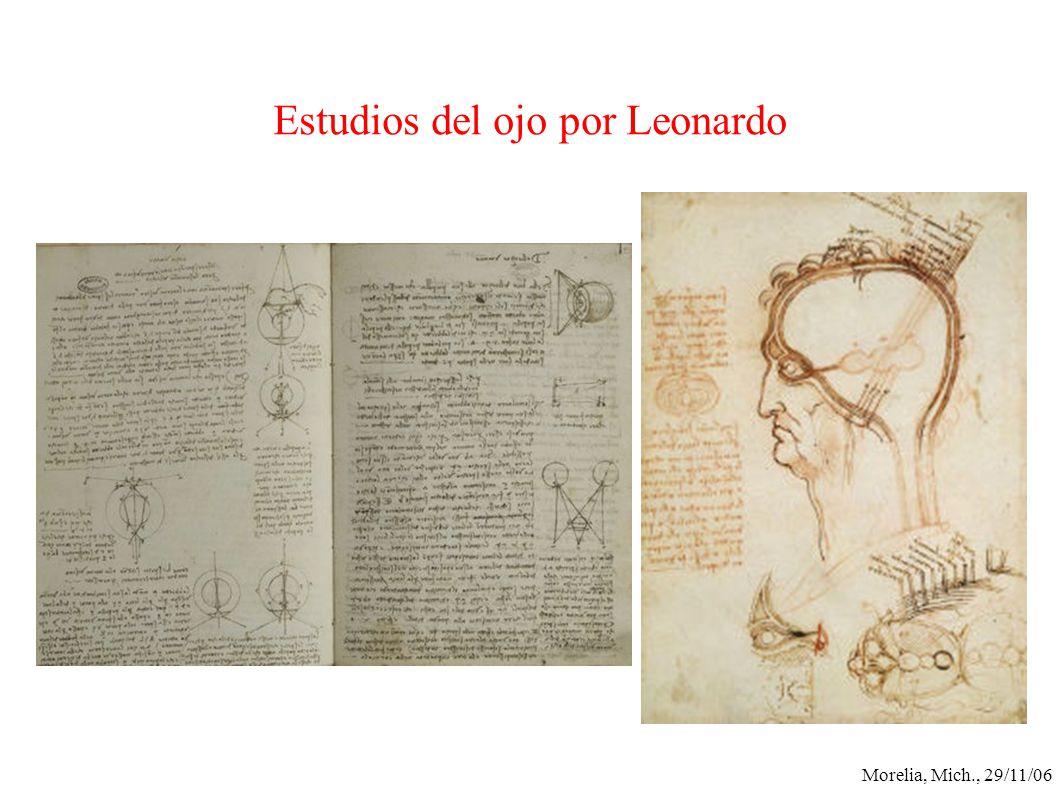 Estudios del ojo por Leonardo