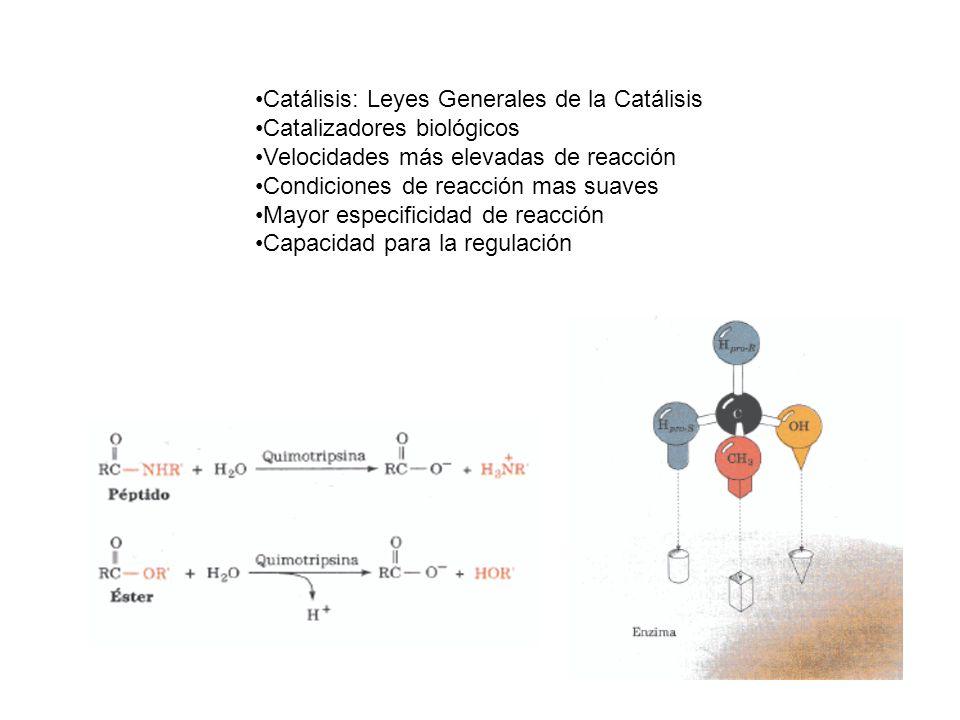 Catálisis: Leyes Generales de la Catálisis