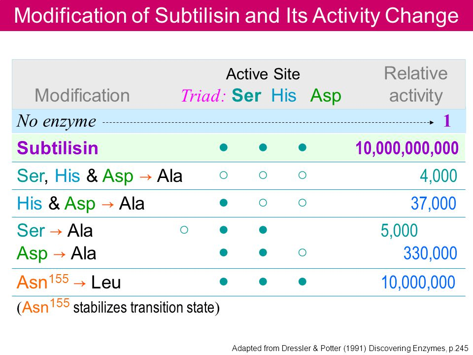 Modification of Subtilisin and Its Activity Change
