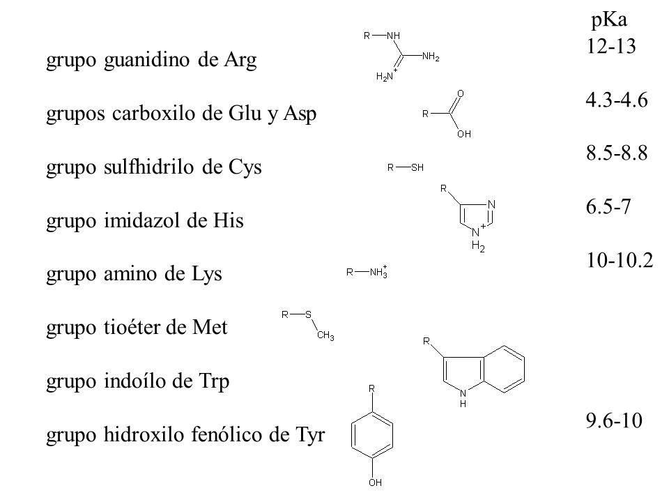 grupo guanidino de Arg grupos carboxilo de Glu y Asp. grupo sulfhidrilo de Cys. grupo imidazol de His.