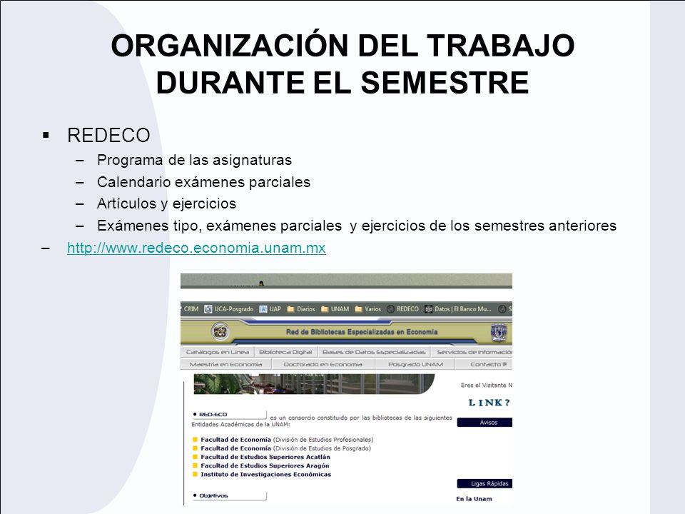 ORGANIZACIÓN DEL TRABAJO DURANTE EL SEMESTRE