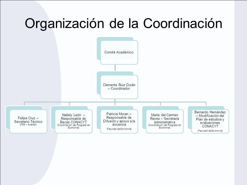 Organización de la Coordinación