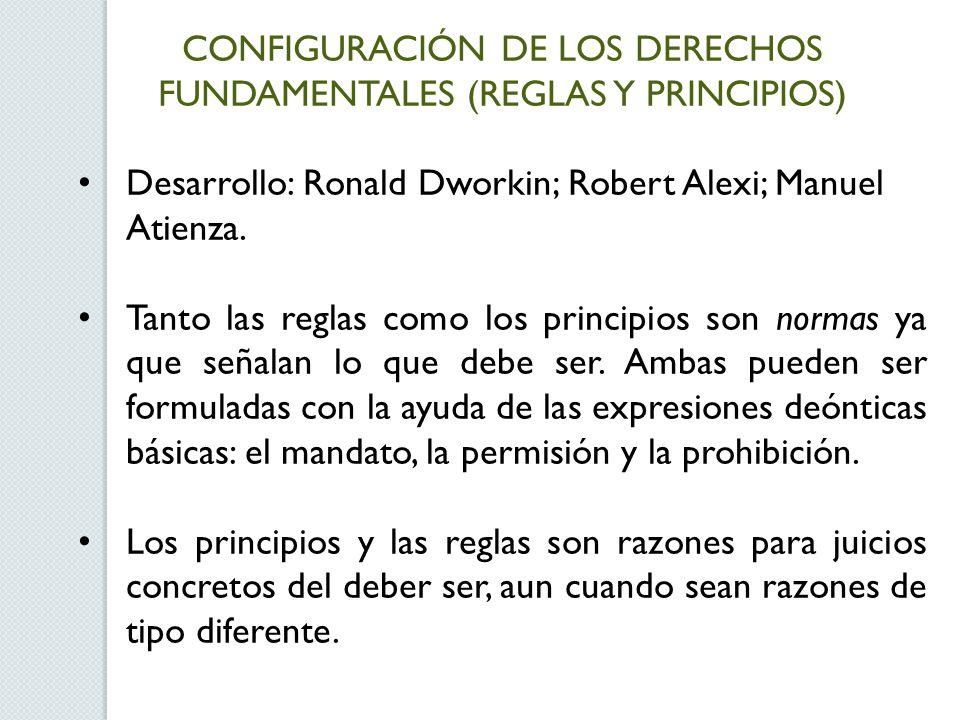 CONFIGURACIÓN DE LOS DERECHOS FUNDAMENTALES (REGLAS Y PRINCIPIOS)