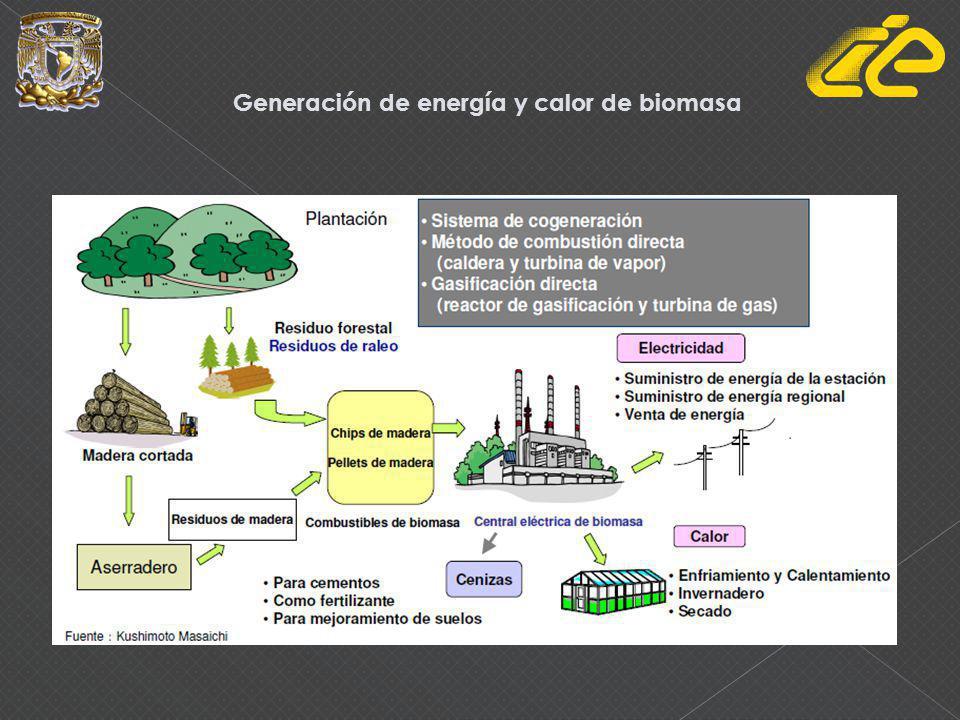 Generación de energía y calor de biomasa