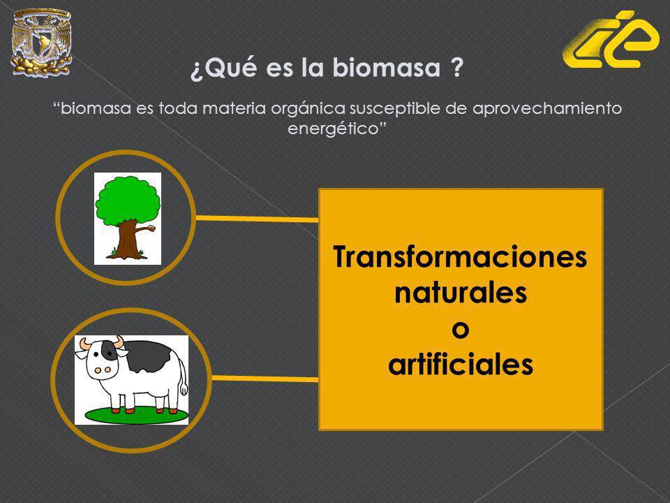 Transformaciones naturales