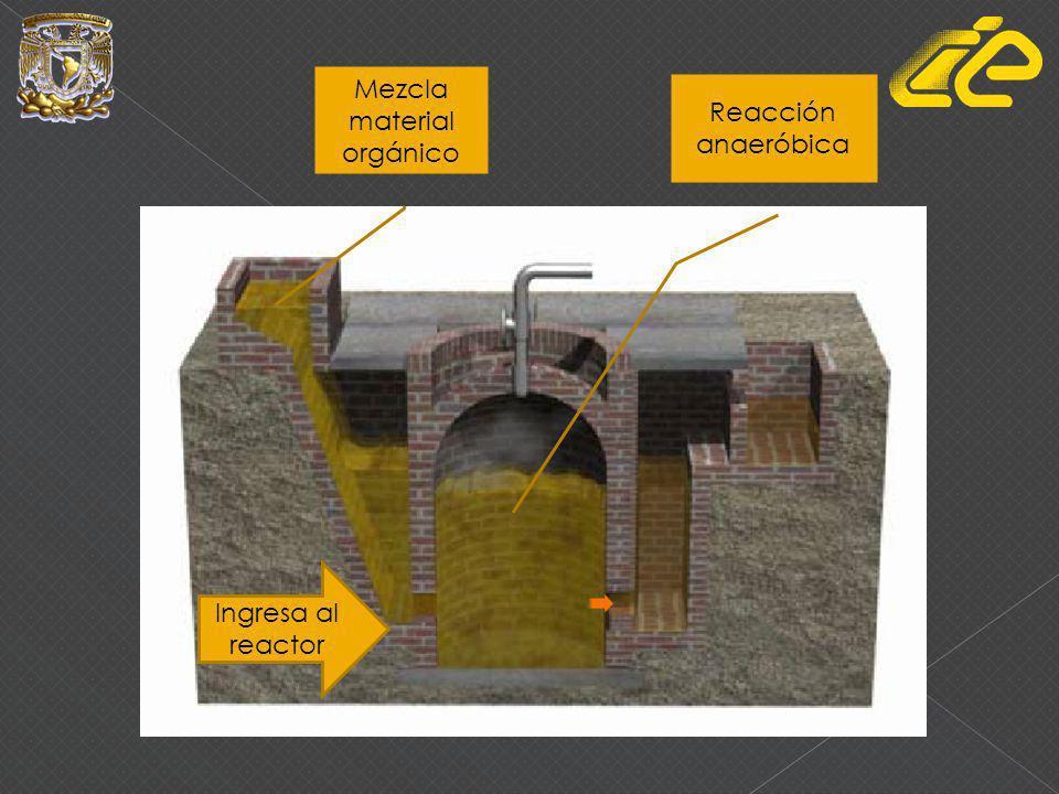 Mezcla material orgánico