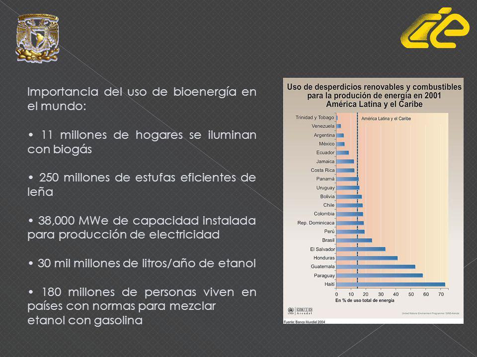 Importancia del uso de bioenergía en el mundo:
