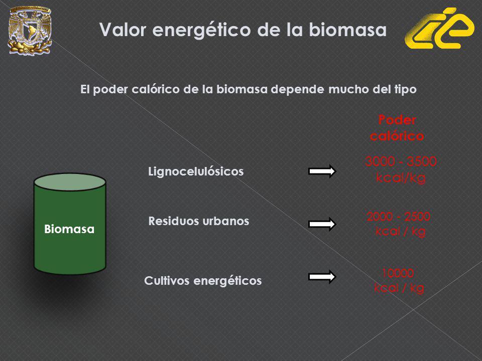 Valor energético de la biomasa