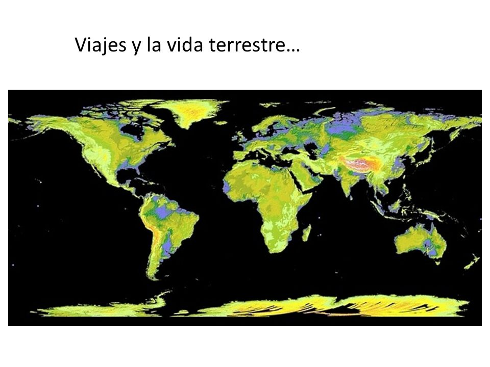 Viajes y la vida terrestre…