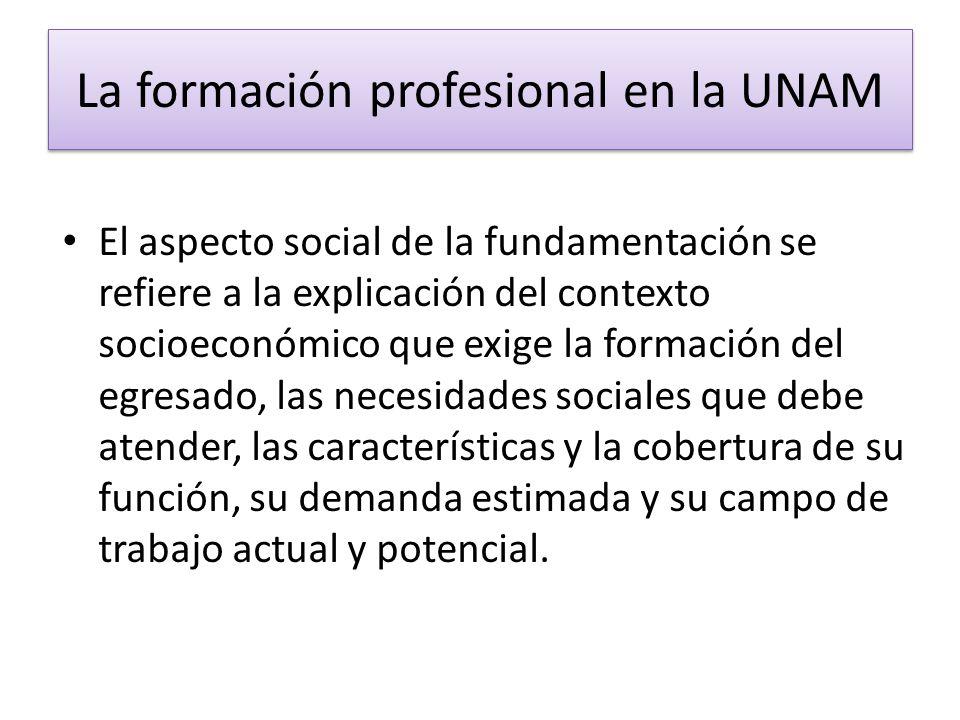 La formación profesional en la UNAM