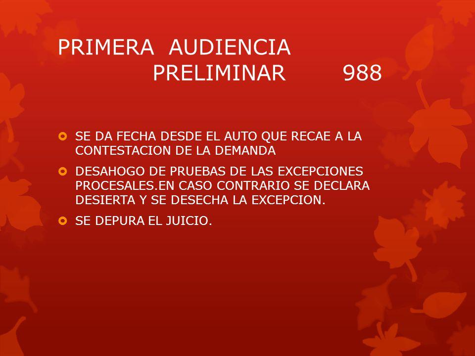 PRIMERA AUDIENCIA PRELIMINAR 988
