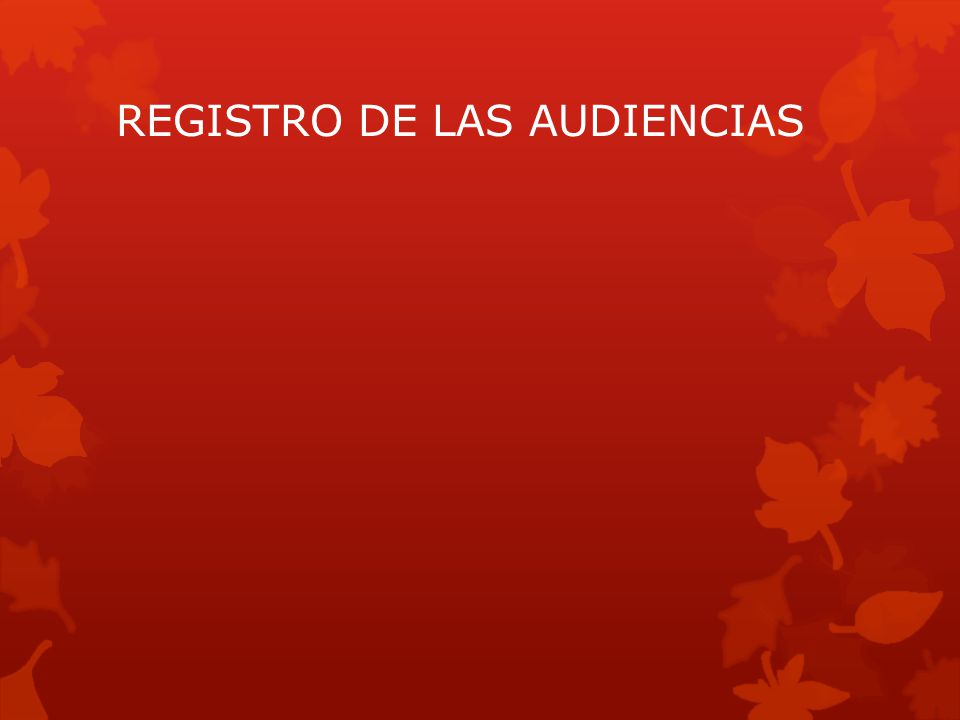 REGISTRO DE LAS AUDIENCIAS