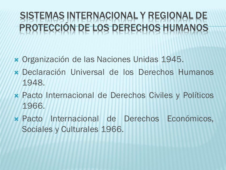 Sistemas internacional y regional de protección de los derechos humanos