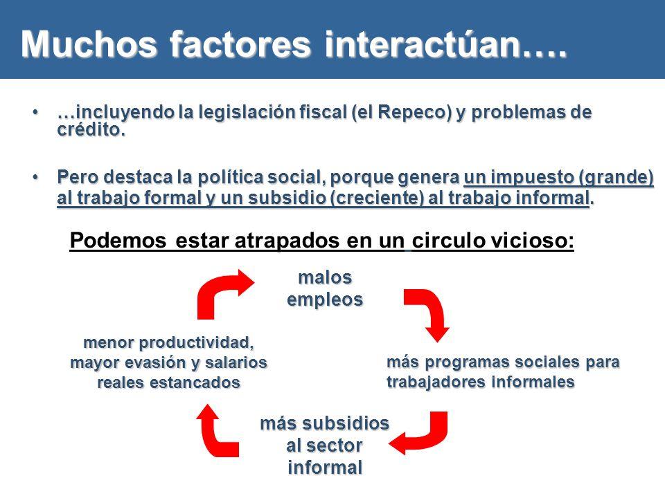 Muchos factores interactúan….