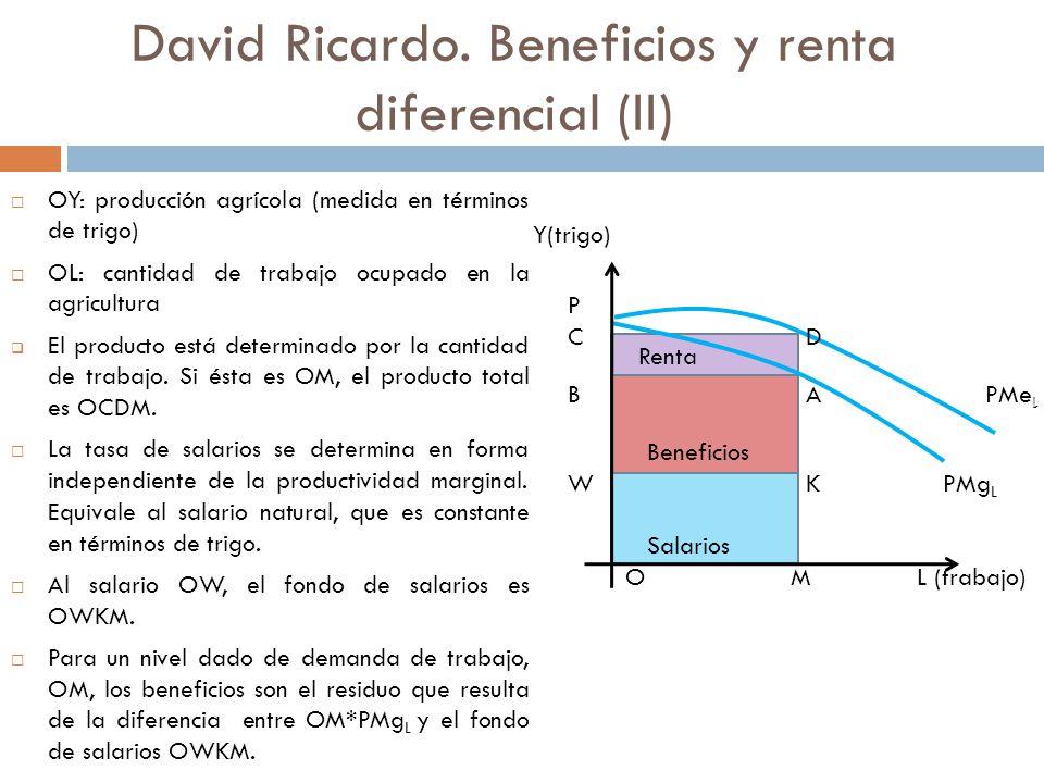 David Ricardo. Beneficios y renta diferencial (II)