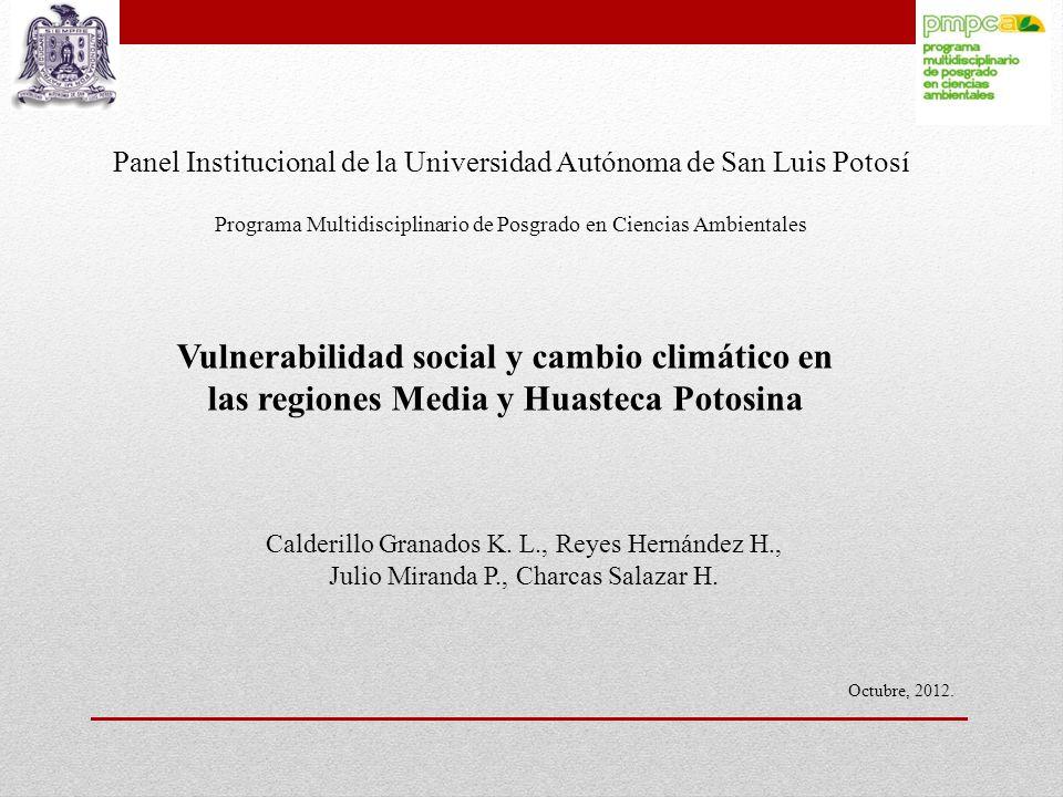 Panel Institucional de la Universidad Autónoma de San Luis Potosí
