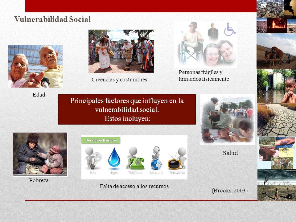Principales factores que influyen en la vulnerabilidad social.