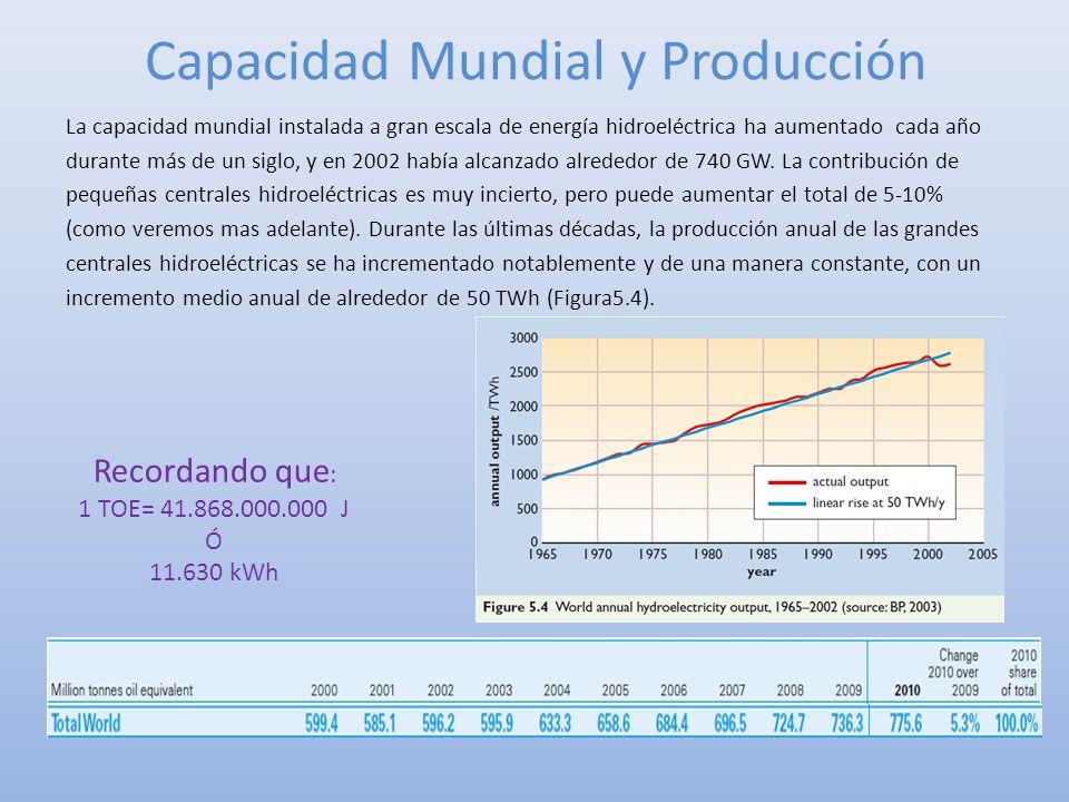 Capacidad Mundial y Producción