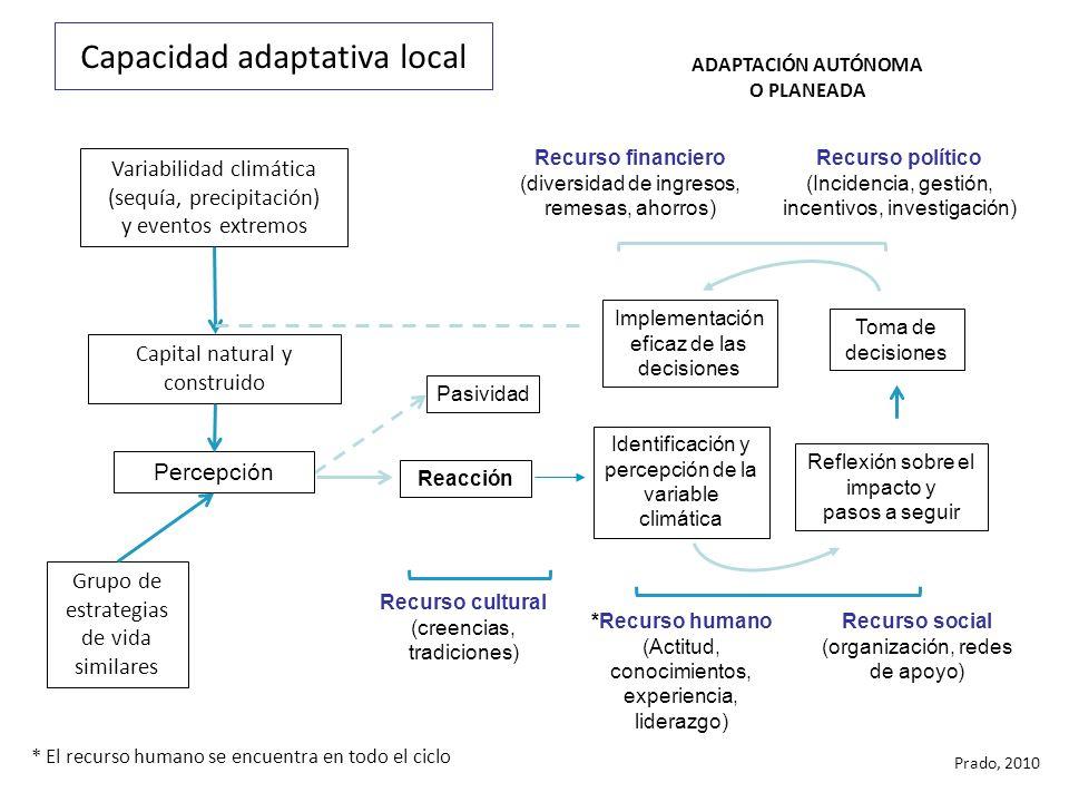 Capacidad adaptativa local