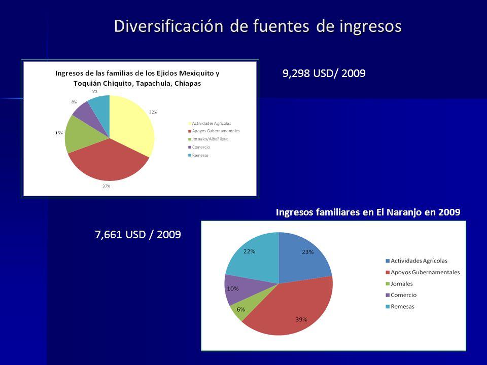 Diversificación de fuentes de ingresos