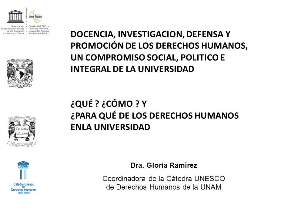 Coordinadora de la Cátedra UNESCO de Derechos Humanos de la UNAM