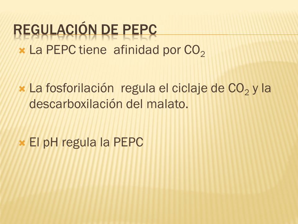 Regulación de PEPC La PEPC tiene afinidad por CO2