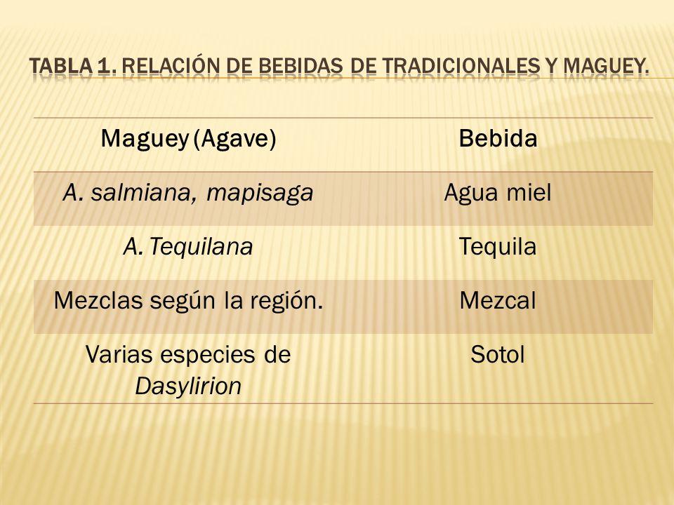TABLA 1. Relación de bebidas de tradicionales y Maguey.