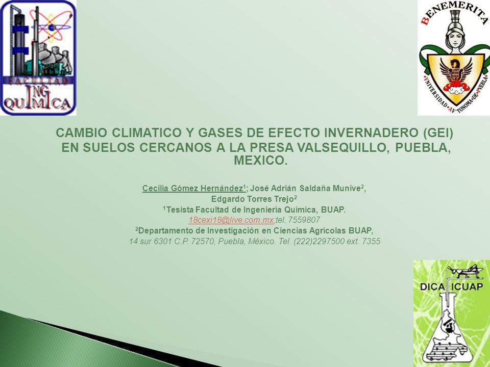 CAMBIO CLIMATICO Y GASES DE EFECTO INVERNADERO (GEI)