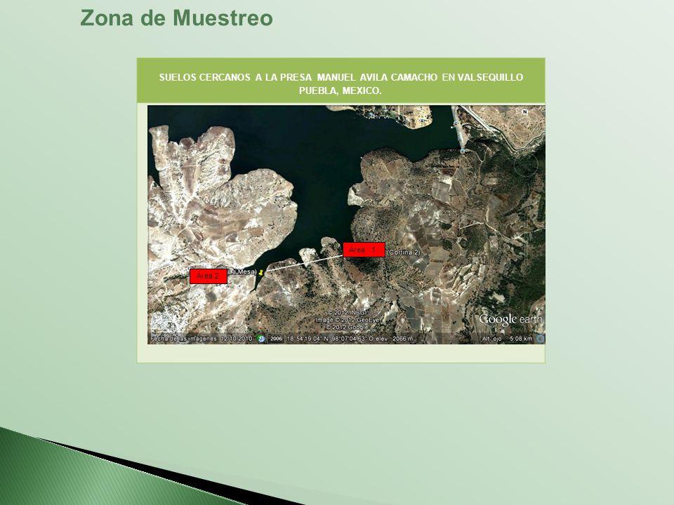 Zona de Muestreo SUELOS CERCANOS A LA PRESA MANUEL AVILA CAMACHO EN VALSEQUILLO PUEBLA, MEXICO. Área 1.