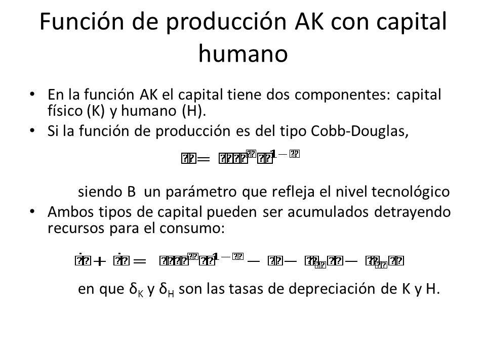 Función de producción AK con capital humano