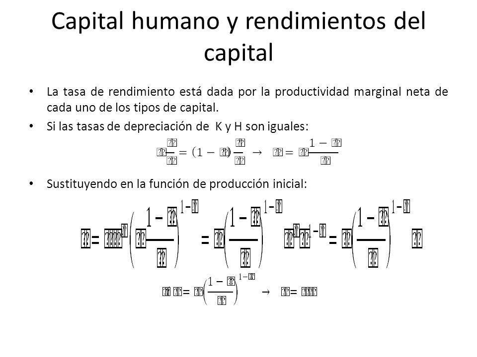 Capital humano y rendimientos del capital
