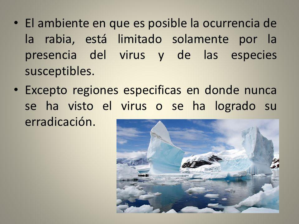 El ambiente en que es posible la ocurrencia de la rabia, está limitado solamente por la presencia del virus y de las especies susceptibles.