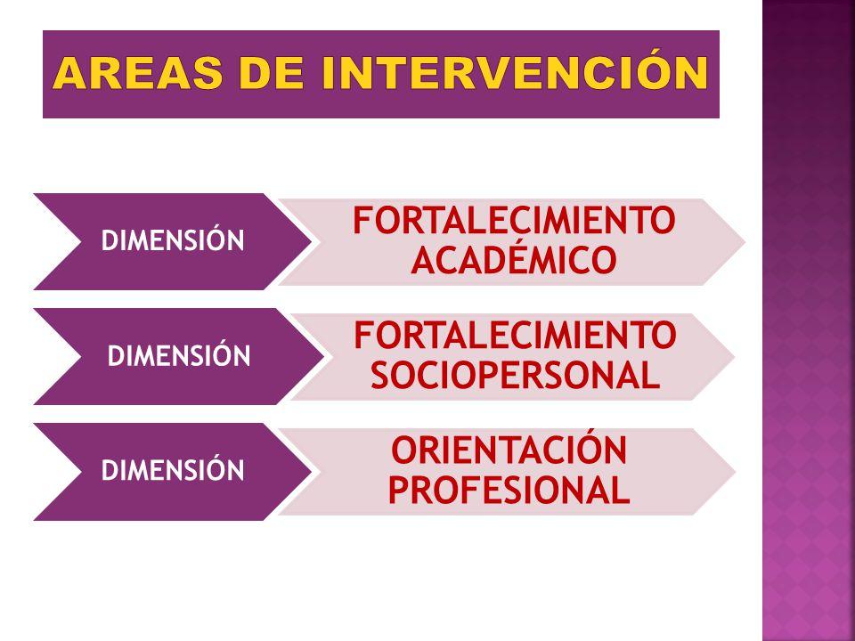 AREAS DE INTERVENCIÓN FORTALECIMIENTO ACADÉMICO