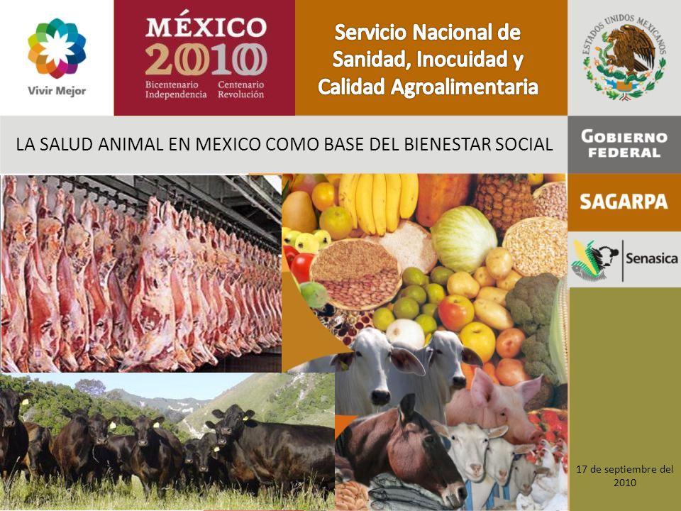 LA SALUD ANIMAL EN MEXICO COMO BASE DEL BIENESTAR SOCIAL