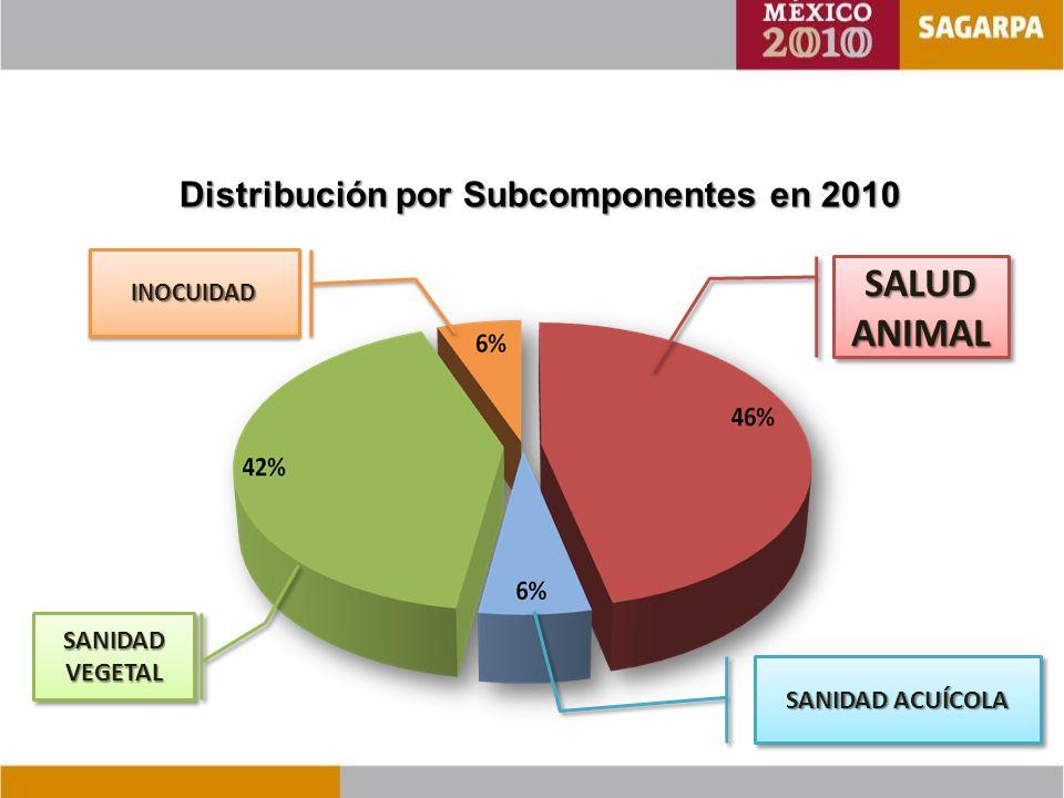 Distribución por Subcomponentes en 2010