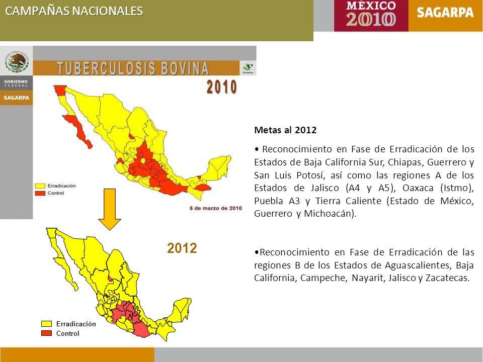 CAMPAÑAS NACIONALES 2012 Metas al 2012
