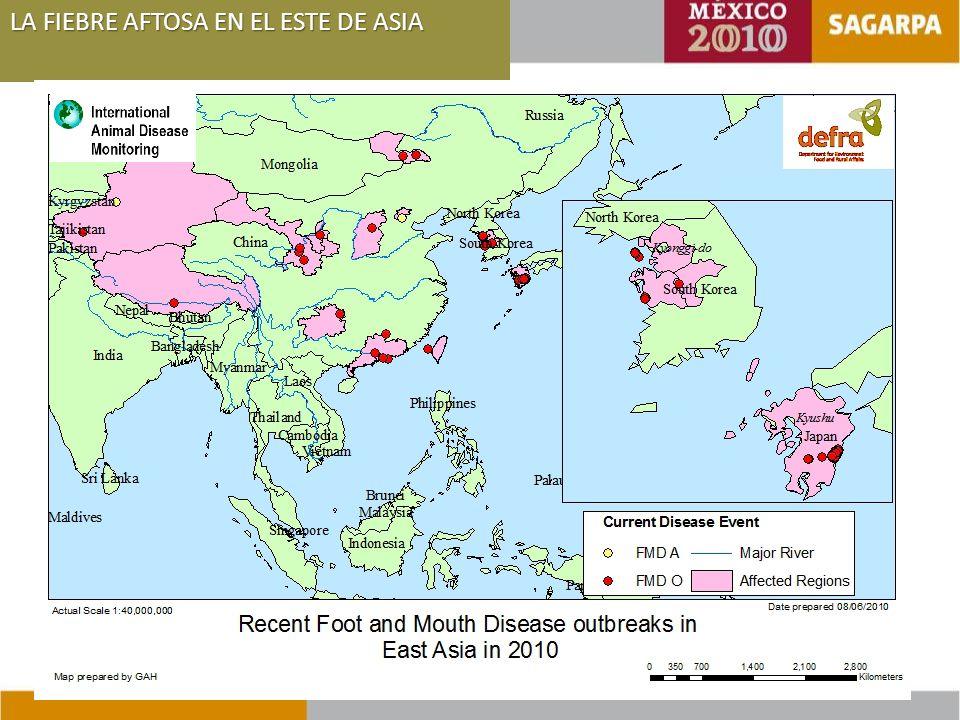 LA FIEBRE AFTOSA EN EL ESTE DE ASIA