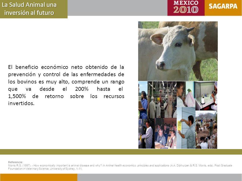 La Salud Animal una inversión al futuro