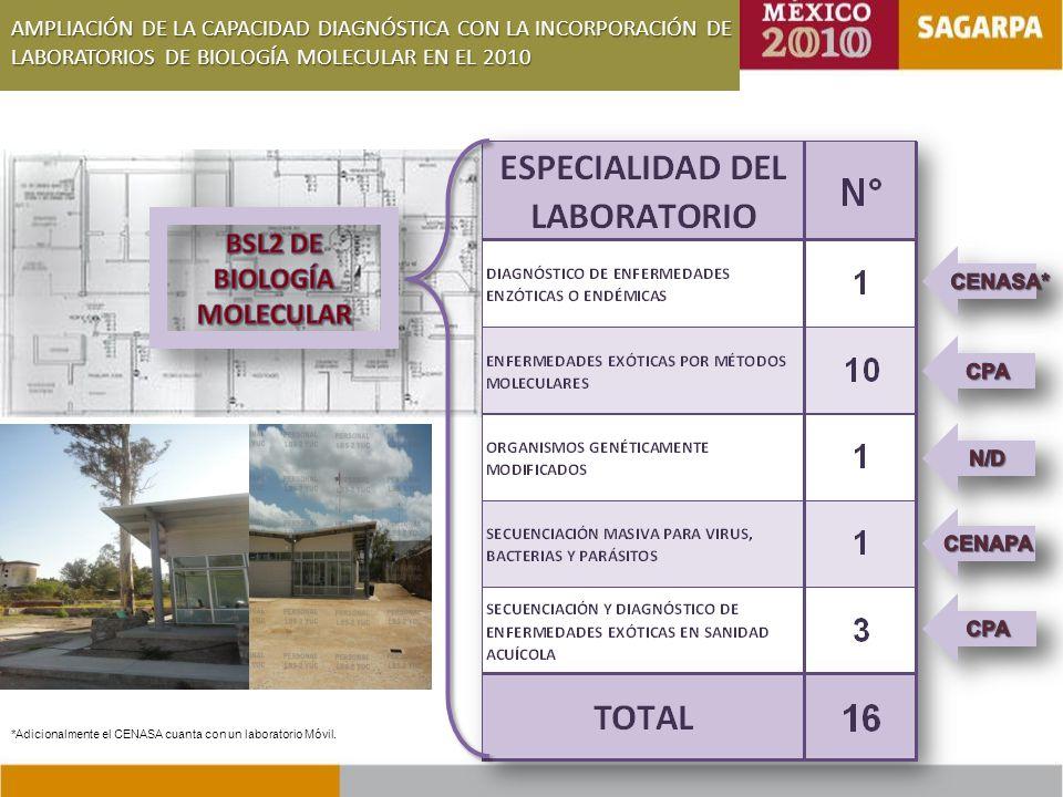 BSL2 DE BIOLOGÍA MOLECULAR