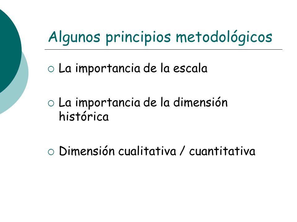 Algunos principios metodológicos